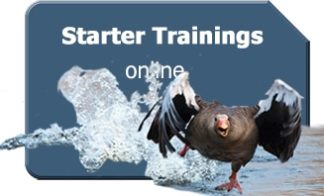Starter-Trainings (online)